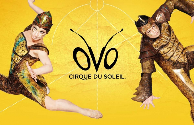 Cirque du Soleil is happy to announce OVO's coming to Russia